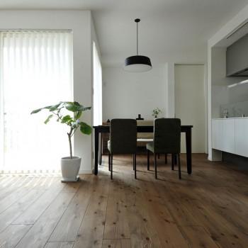 自然と穏やかにくらす、空気がきもちいい家