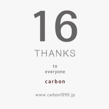 carbon16_3